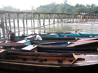Regency in Riau Islands, Indonesia
