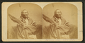 Sioux Chief 'Roman Nose', from Robert N. Dennis collection of stereoscopic views.png