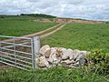 Site of St Ninian's Well - geograph.org.uk - 455167.jpg