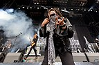 Skindred - 2017153160030 2017-06-02 Rock am Ring - Sven - 5DS R - 0218 - 5DSR9740.jpg