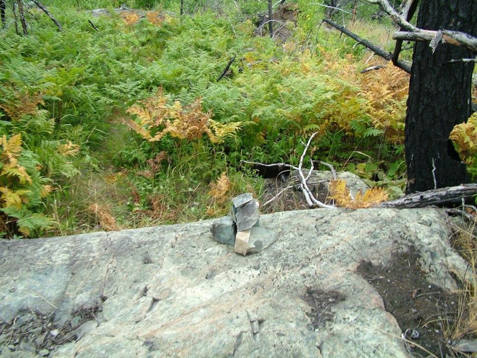 Snowbank Trail arf1