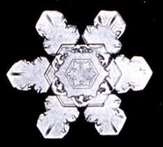 Snowflake10.png