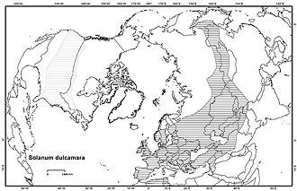 Solanum dulcamara - Distribution of S. dulcamara