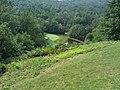 Some Golf Hole - panoramio.jpg