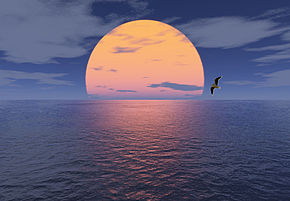 Sonne Meer und Möwe.jpg