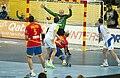 Spain vs Slovenia at 2013 World Handball Championship (18).jpg