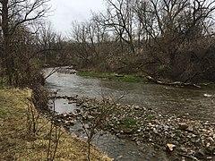 Spencer Creek 20200426 174804978 iOS.jpg