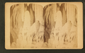 Stalagtites, Caverns of Luray, by C. H. James.png