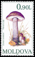 Stamp of Moldova 239 - 2.png