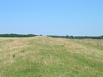 Stane Street (Chichester) - Stane Street under pasture on the South Downs.