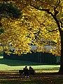 Stanley Park (Inner Harbor) Scene - Vancouver - BC - Canada - 10 (26221821229) (2).jpg
