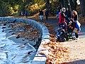 Stanley Park (Inner Harbor) Scene - Vancouver - BC - Canada - 12 (37944606456) (2).jpg