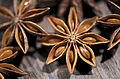 Star Anise Series (4297746909).jpg