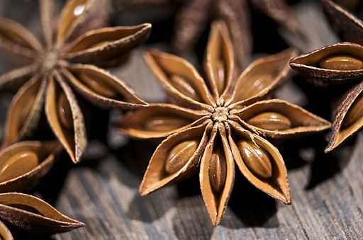 Star Anise Series (4297746909)