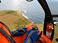 Starr-141014-2222-Syzygium cumini-aerial view-Kakipi Gulch Haiku-Maui (25154096341).jpg