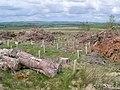 Start again - geograph.org.uk - 440312.jpg