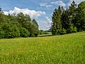 Steigerwald Weilersbachtal 5260038.jpg