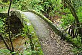 Stone bridge at start of Kaituna Track.jpg