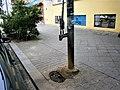 Straßenbrunnen 165 Wedding Lindower Straße (10).jpg