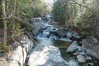 Phelps Mountain (New York) - A stream on the way to Phelps Mountain from the Adirondak Loj