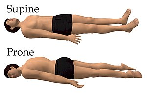 Prone position - Supine position and prone position