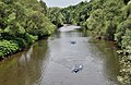 Sure River from Alfred Toepfer Bridge.jpg