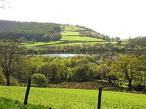 Talley Lower Lake - geograph.org.uk - 405742.jpg