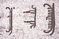 Tanum 1 vitlycke ID 10160600010001 IMG 8511.jpg