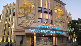 Taraporewala Aquarium aquarium in Mumbai, India