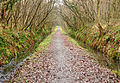 Tarka Trail on Clay Moor.jpg