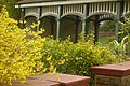 Teahouse and Forsythia.jpg