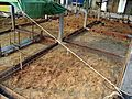Thai House Formwork Footings.JPG