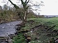 The River Wharfe, Low Park - geograph.org.uk - 425379.jpg