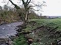 The River Wharfe, Low Park - geograph.org.uk - 425379.jpg