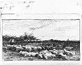 The Sheep Meadow MET 271590.jpg