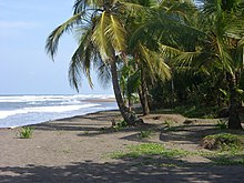 Caribbean Sea Beach At Tortuguero Costa Rica