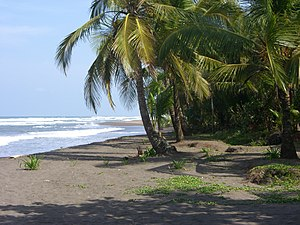Tortuguero, Costa Rica - Caribbean Sea Beach at Tortuguero