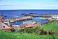 The harbour, St. Abbs - geograph.org.uk - 17434.jpg