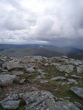 The summit of Mayar - geograph.org.uk - 485297.jpg