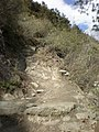Tiger Leaping Gorge trail 27.JPG