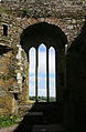 Timoleague Friary Window.jpg