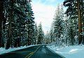 Tioga Road after Snow, Yosemite NP 2015 (29122419590).jpg