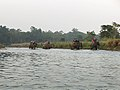 Tourist crossing the river road to check wild Animal of Chitwan.jpg