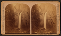 Tower Falls, by Ingersoll, T. W. (Truman Ward), 1862-1922.png