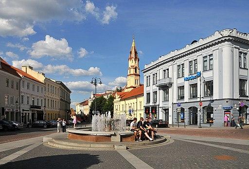 Town Hall Square Vilnius (5987797016)