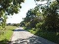 Tree-lined road into Imber - geograph.org.uk - 539280.jpg