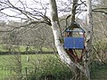Treehouse and Menhir - geograph.org.uk - 371035.jpg