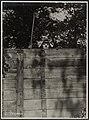 Truus van Aalten - Alexander Binder - EYE FOT168454.jpg