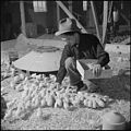 Tule Lake Relocation Center, Newell, California. Harry Makino, manager of the Tule Lake Poultry far . . . - NARA - 537136.jpg