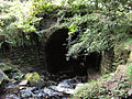 Tunnel at the bottom of Rake End - geograph.org.uk - 1565331.jpg